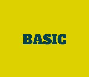 Icon Basis